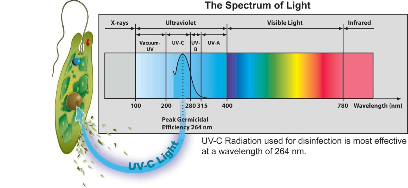 images_photos_uvuv سیستمهای پرتودهی فرابنفش UV